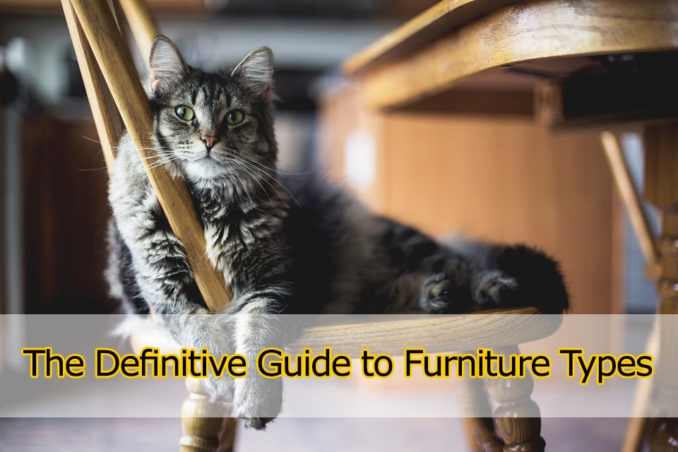 Furniture Types