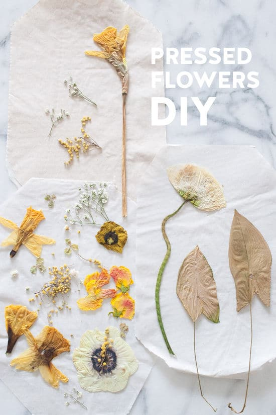 DIY Flower Press